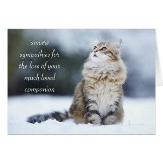 Tarjeta de condolencia para la pérdida de un gato