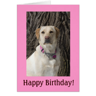 Tarjeta de cumpleaños amarilla rosada del laborato