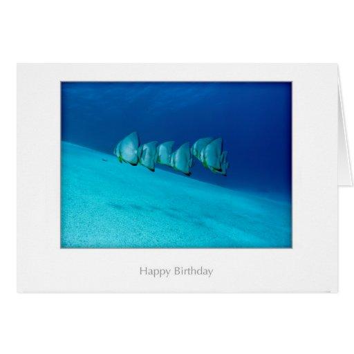 Tarjeta de cumpleaños azul del Batfish