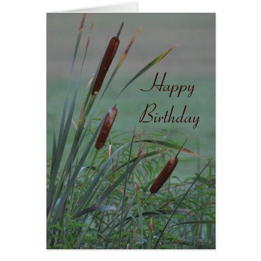 Tarjeta de cumpleaños brumosa de los Cattails