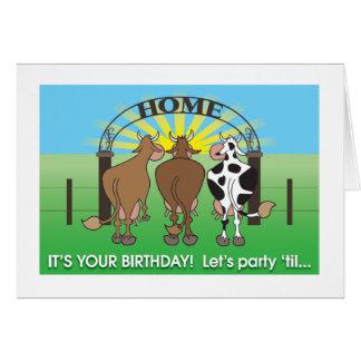 Tarjeta de cumpleaños chistosa casera de las vacas