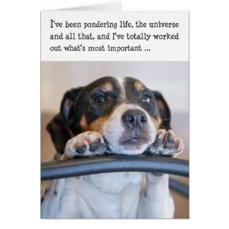 Tarjeta de cumpleaños chistosa - perro que