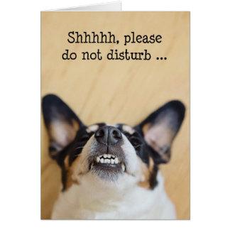 Tarjeta de cumpleaños chistosa - perro que lleva