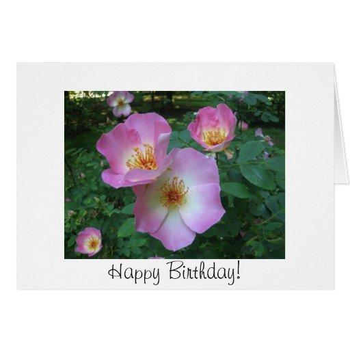 Tarjeta de cumpleaños color de rosa