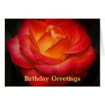 Tarjeta de cumpleaños color de rosa llameante