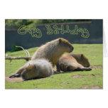 Tarjeta de cumpleaños con el Capybara