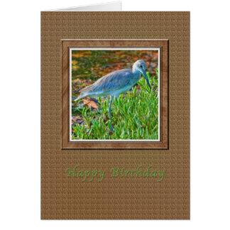 Tarjeta de cumpleaños con el pájaro de Willet