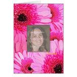 Tarjeta de cumpleaños con las margaritas rosadas