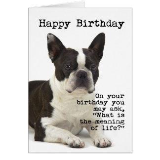 Tarjeta de cumpleaños de Boston Terrier