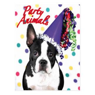 Tarjeta de cumpleaños de Boston Terrier Tarjetas Postales