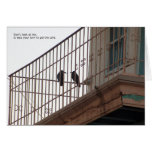 tarjeta de cumpleaños de dos cuervos