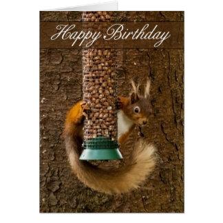 Tarjeta de cumpleaños de la ardilla roja