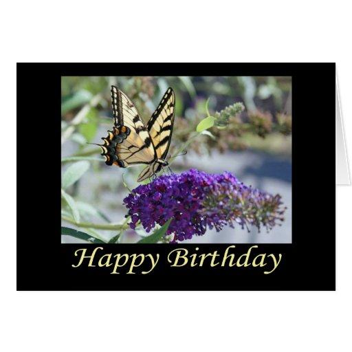 Tarjeta de cumpleaños de la mariposa de Swallowtai