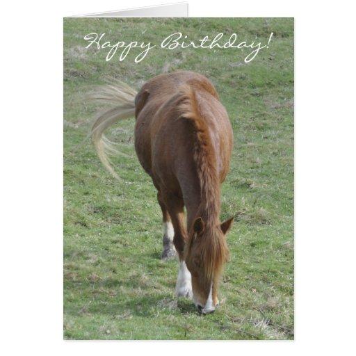 Tarjeta de cumpleaños de la mazorca Galés