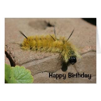 Tarjeta de cumpleaños de la naturaleza de Caterpil