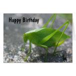 Tarjeta de cumpleaños de la naturaleza del saltamo