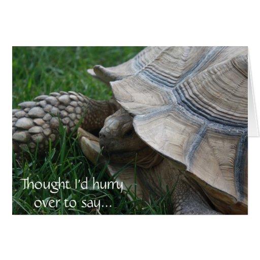 Tarjeta de cumpleaños de la prisa de la tortuga