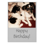 Tarjeta de cumpleaños de los perritos de Jack Russ