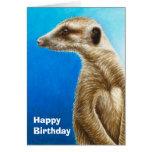 Tarjeta de cumpleaños de Meerkat