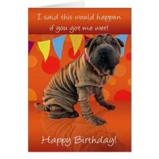 Tarjeta de cumpleaños de Shar Pei de la diversión