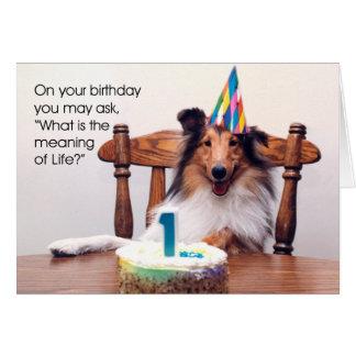 Tarjeta de cumpleaños de Sheltie