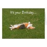 Tarjeta de cumpleaños del beagle (divertida)