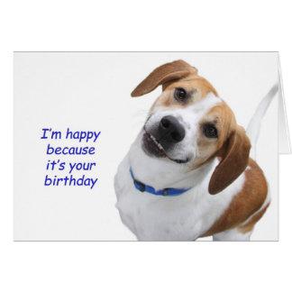 Tarjeta de cumpleaños del beagle por el foco para