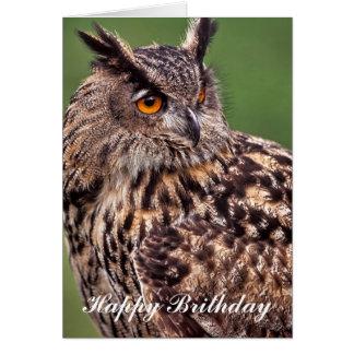 Tarjeta de cumpleaños del búho de Eagle