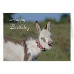 Tarjeta de cumpleaños del burro