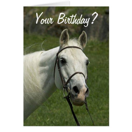 Tarjeta de cumpleaños del caballo blanco | Zazzle