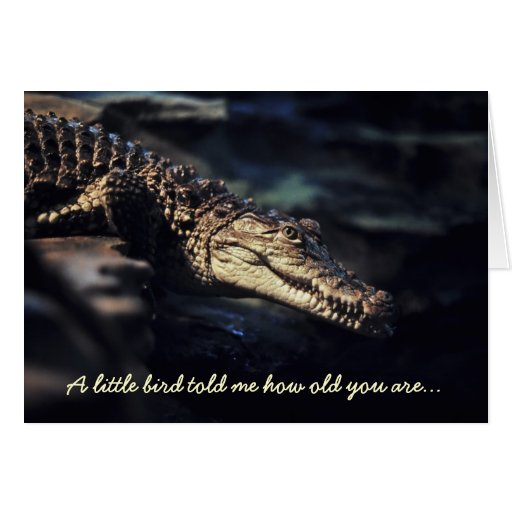 Tarjeta de cumpleaños del cocodrilo