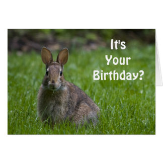 Tarjeta de cumpleaños del conejito