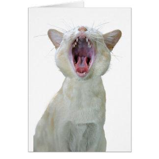 Tarjeta de cumpleaños del gato birmano
