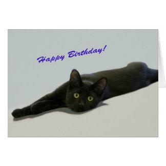 Tarjeta de cumpleaños del gato negro por el foco p