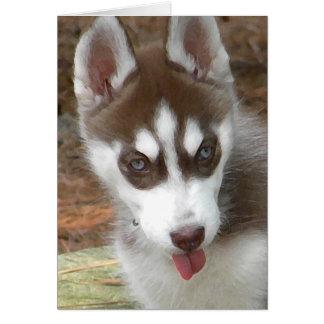 Tarjeta de cumpleaños del husky siberiano AW