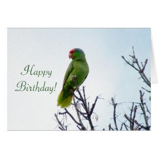 Tarjeta de cumpleaños del loro