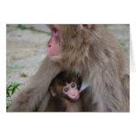 Tarjeta de cumpleaños del mono de la madre y del b