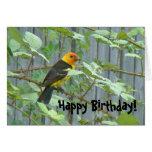 Tarjeta de cumpleaños del pájaro del Tanager
