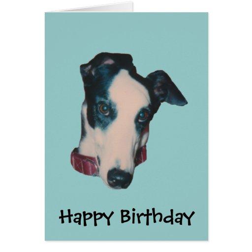 Tarjeta de cumpleaños del perro de la cara del gal