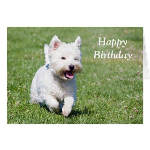 Tarjeta de cumpleaños del perro de Terrier blanco
