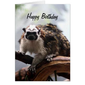 Tarjeta de cumpleaños del Tamarin de Geoffroy