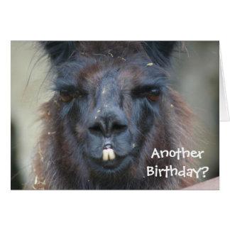 Tarjeta de cumpleaños divertida animal de la llama