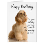 Tarjeta de cumpleaños divertida de cocker spaniel