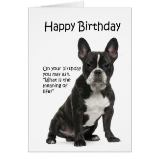 Tarjeta de cumpleaños divertida de Frenchie