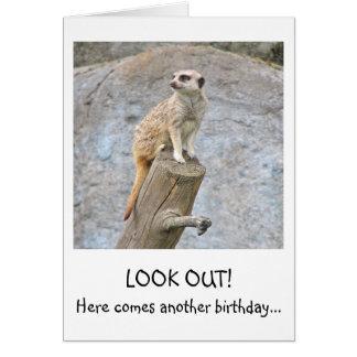 Tarjeta de cumpleaños divertida de Meerkat
