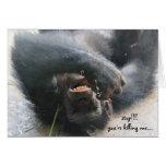 Tarjeta de cumpleaños divertida del chimpancé,