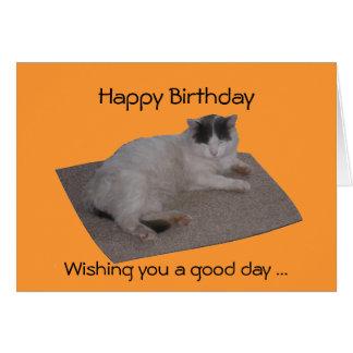 Tarjeta de cumpleaños divertida del gato