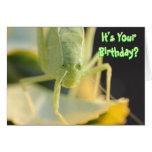 """Tarjeta de cumpleaños--""""Fastidíele"""" tarjeta de cum"""