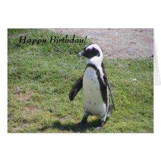 ¡Tarjeta de cumpleaños feliz del pingüino! Tarjeta Pequeña