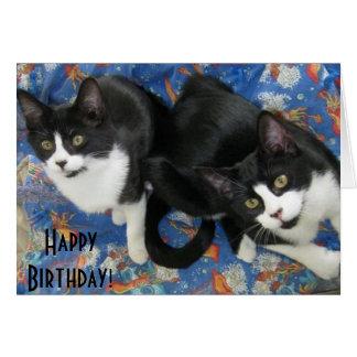 Tarjeta de cumpleaños gemela de los gatitos del sm